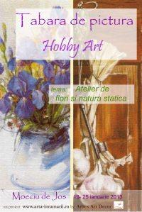 Tabara de pictura hobby art editia de iarna 2013