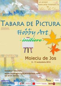 Taara de pictura Hobby Art pentru adulti- nivel pentru incepatori