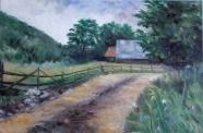 Thea Zinca - Timisoara