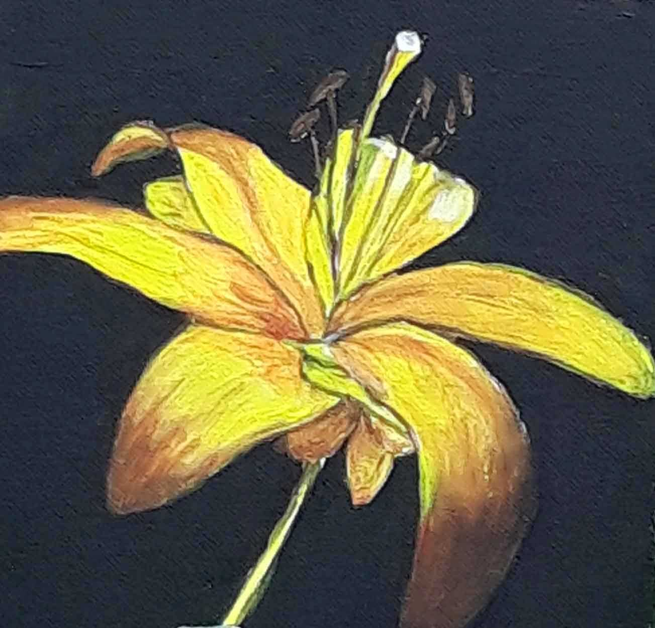 Galeria de picturi realizate in Tabara de pictura Hobby Art editia de vara Costesti 2020